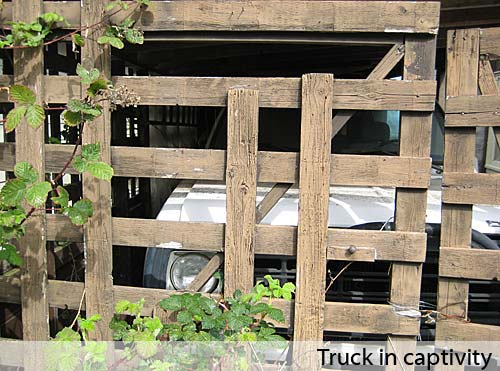 Truck in captivity