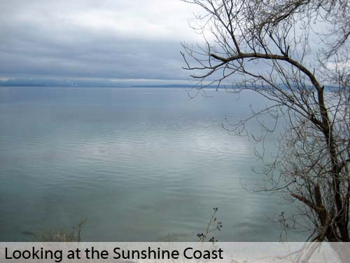 Looking at the Sunshine Coast